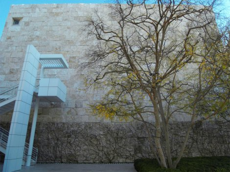 getty-tree-and-rock